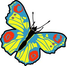 Free Butterfly Royalty Free Stock Photography - 8072267