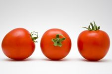Free Tomatoes Stock Photos - 8072623