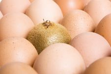Free Eggs Stock Photography - 8074542