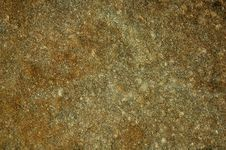 Free Texture Of A Sea Stone Stock Photography - 8074672