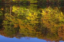 Free Rippled Reflection In Autumn Royalty Free Stock Photography - 8075027