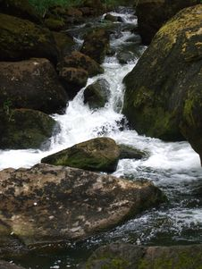Free Oregon Stream Royalty Free Stock Images - 8075079