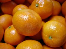 Free Oranges Stock Photo - 8075080