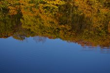 Free Autumn Foliage Reflection Royalty Free Stock Images - 8075129