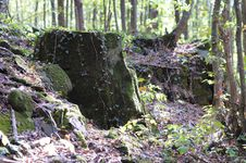 Free Overgrown Rock. Royalty Free Stock Images - 8075289