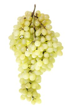 Free Grape Cluster Royalty Free Stock Photos - 8076058