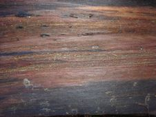 Nature Wood Grain Texture Royalty Free Stock Photography