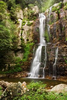 Free Waterfall Minnamurra Stock Image - 8077621