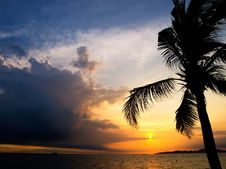 Free Evening Sky On Pataya Beach Royalty Free Stock Image - 8078046