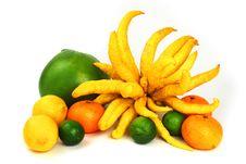 Free Citrus A Plenty Royalty Free Stock Photography - 8078077