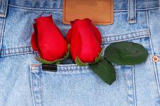 Roses In Denim Pocket Stock Images