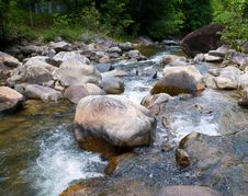 Free Stony Stream In The Forest Stock Photos - 8079823