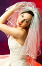 Free Young Bride Stock Photography - 8086322