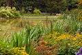 Free Autumn Pond Stock Photo - 8088550