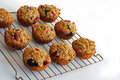 Free Fresh Baked Muffins Stock Photos - 8089763