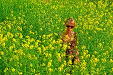 Woman In The Yellow Flowers Field Stock Photos