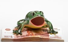Free Frog On A Pile Of  Denominations Royalty Free Stock Photos - 8082938