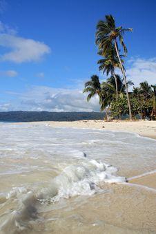 Free Beach On The Island Royalty Free Stock Photos - 8083568