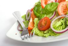 Free Salad Stock Images - 8083654