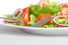 Free Salad Stock Images - 8083774
