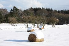 Hay Bales In The Snow Stock Photo