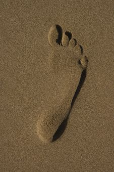 Free Footprint In The Sand Royalty Free Stock Photos - 8087168