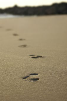 Free Foot Prints Stock Photography - 8087182
