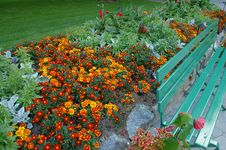 Free Flowers And Bench Royalty Free Stock Images - 8087539