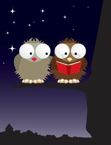 Free Mr And Mrs Owl In Love Royalty Free Stock Images - 8087579