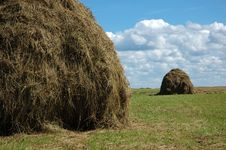 Free Hayfield And Haystack Stock Photos - 8088263
