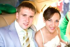 Free Portrait Smiling Groom And Bride Stock Photo - 8088540