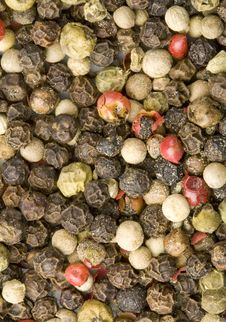 Free Pepper Of Four Colours Stock Image - 8088771