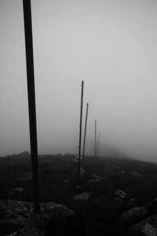 Free Path In Fog Royalty Free Stock Images - 8088949