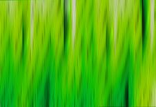 Free Green Lines Stock Images - 8089514
