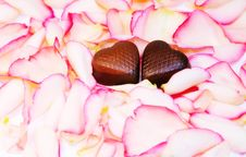 Free Tender Love - Chocolate Hearts Over Rose Petals Stock Photography - 8089852