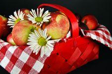 Free Fruit Basket Stock Photography - 8089872