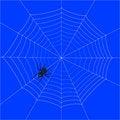 Free Spider Web Stock Photos - 8091273