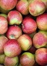 Free Coloured Apples Royalty Free Stock Photos - 8092418