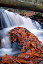 Free Autumn Waterfall In Bohemia Royalty Free Stock Images - 8092569