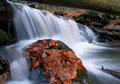 Free Autumn Waterfall In Bohemia Royalty Free Stock Photography - 8092577