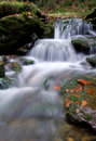 Free Autumn Waterfall In Bohemia Royalty Free Stock Photos - 8092628
