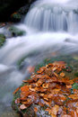 Free Autumn Waterfall In Bohemia Stock Photography - 8092652