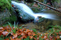 Free Autumn Waterfall In Bohemia Royalty Free Stock Image - 8092686