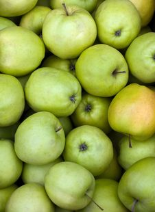 Free Green Apples Royalty Free Stock Photo - 8092465