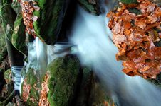 Free Autumn Waterfall In Bohemia Stock Images - 8092694
