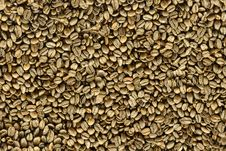 Free Coffee Beens (seamless Texture) Stock Photo - 8093240