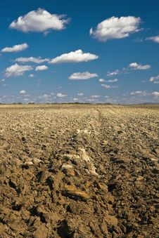 Free Rural Landscape With The Ploughed Field Stock Image - 8095521
