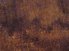 Free Texture Royalty Free Stock Photography - 8096067