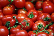 Free Fresh Tomatoes Royalty Free Stock Photos - 8097418