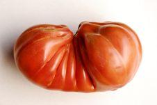 Free Tomato Royalty Free Stock Photos - 8097588